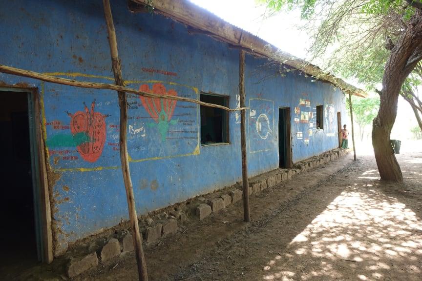 En skola i behov av förbättring!