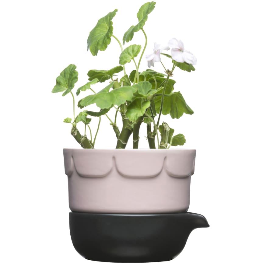 Inspiration till vårens odling - Tvådelad odlingskruka