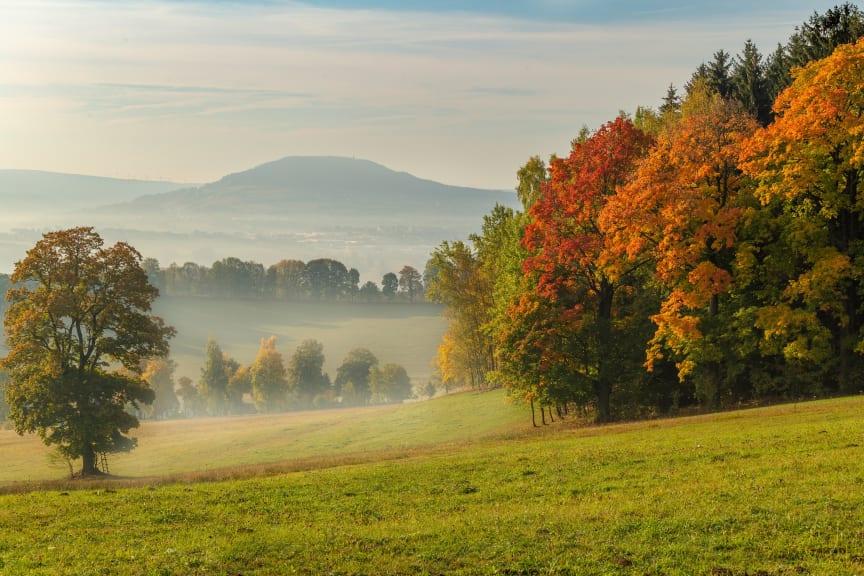 Herbst Sonne_Ausblick_vom_Kalten_Muff_richtg.ANA_Foto_TVE_Photoron_Ronny Küttner (1 von 1)-6 - Kopie