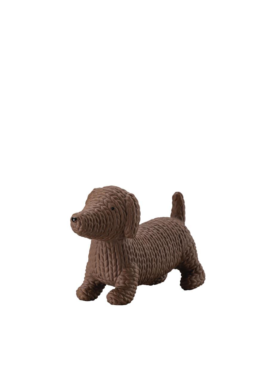 R_Pets_Dog_Alfonso_medium