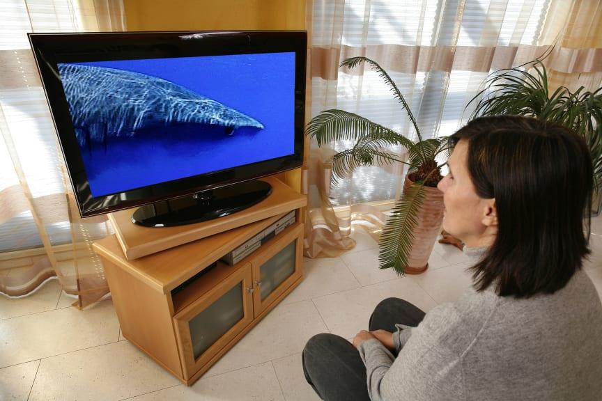 DVB-T2 steht schon in den Startlöchern