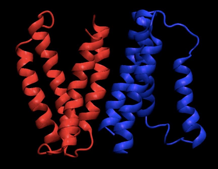Ett typiskt membranprotein
