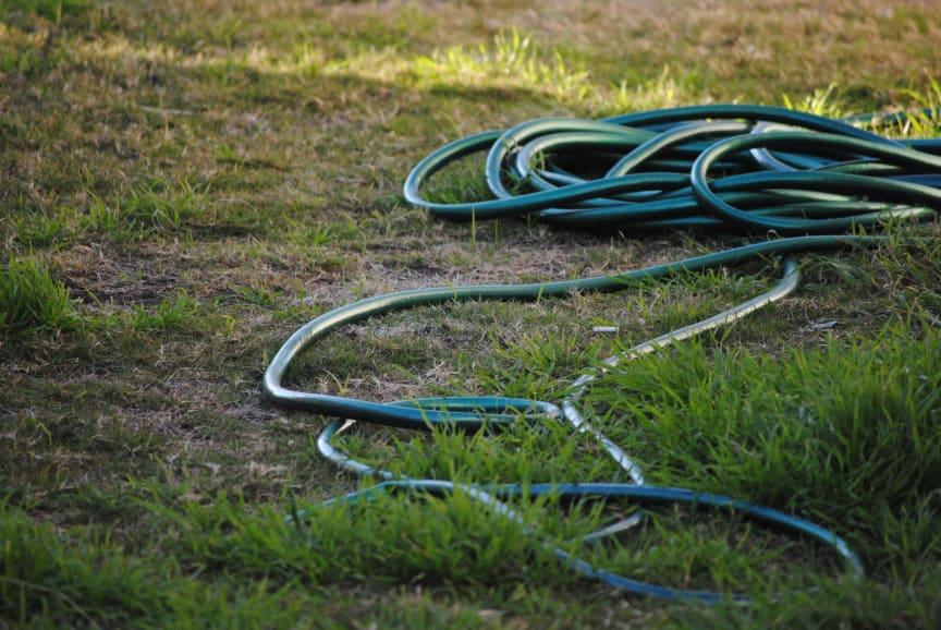 Vattenslang på gräsmatta