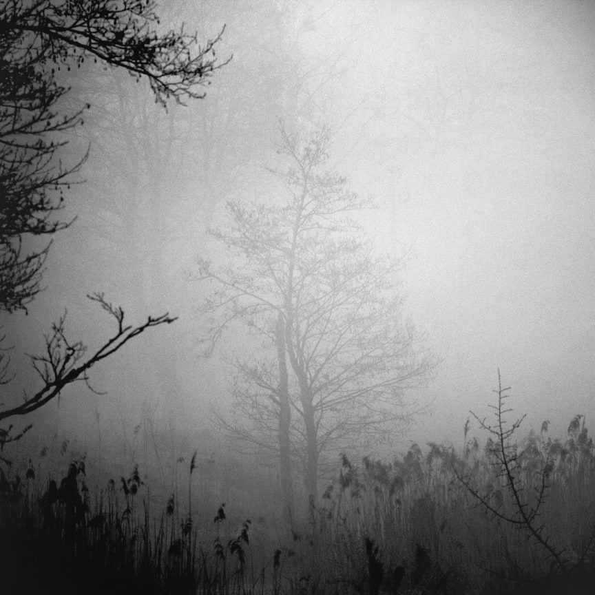 © Andrius Grigalaitis, Lithuania, Shortlist, Professional competition, Landscape , 2020 Sony World Photography Awards (2)