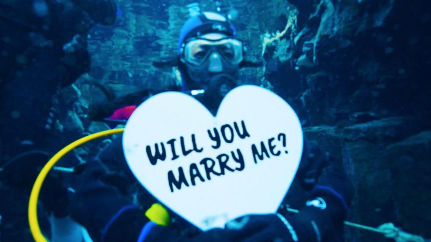 Jennifer and matt, the proposal