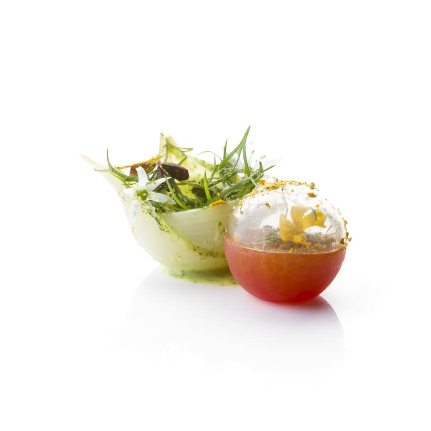 Bocuse-d'Or_2018_Garnityr_SG_Onion-and-Tomato
