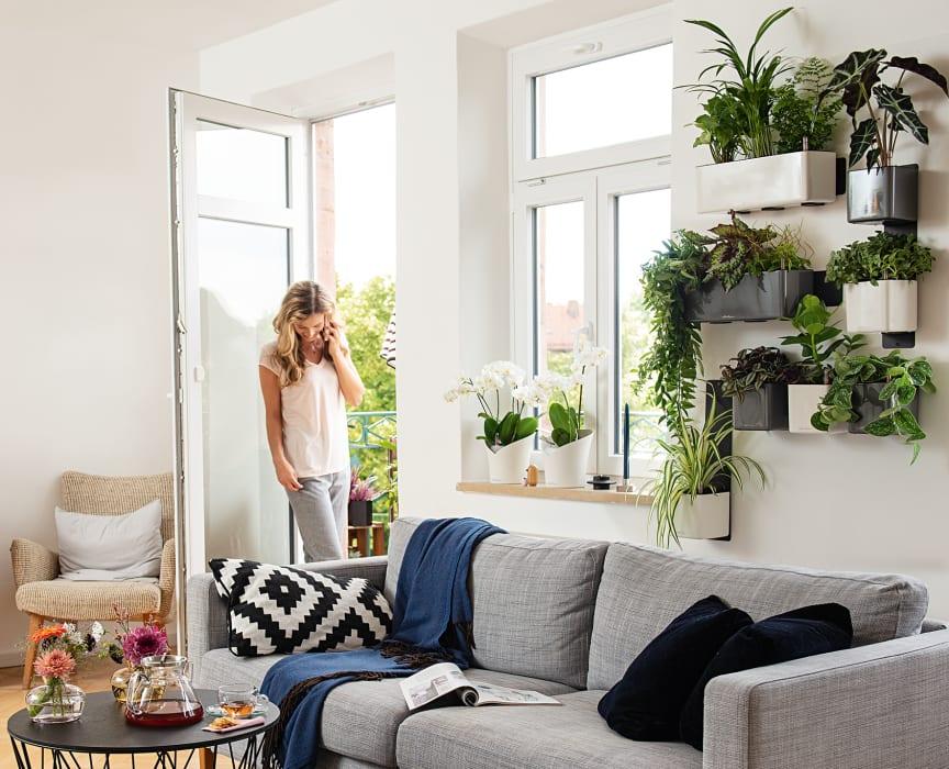 Ein hängender Garten im eigenen Zuhause