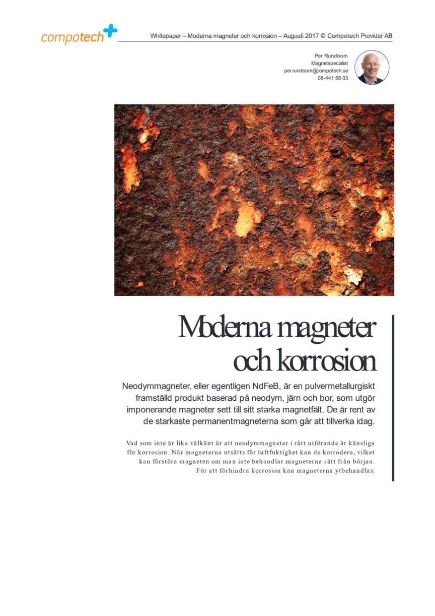 White Paper: Moderna magneter och korrosion