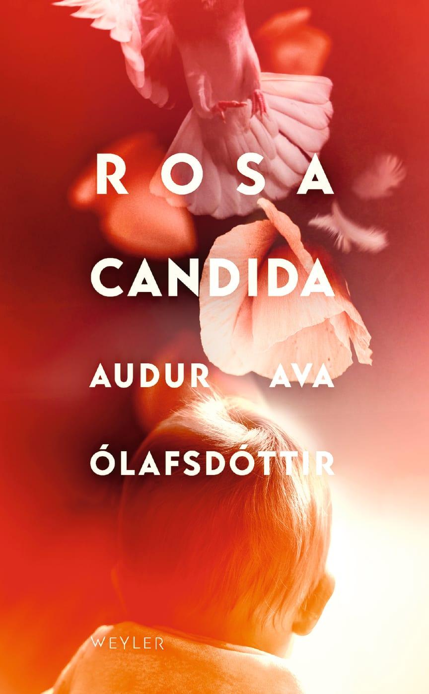 Omslagsbild, Rosa Candida