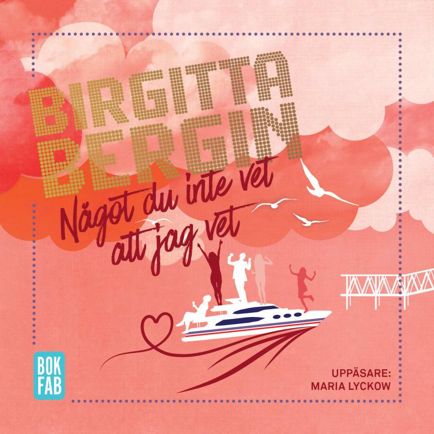 Birgitta Bergin - Något du inte vet att jag vet