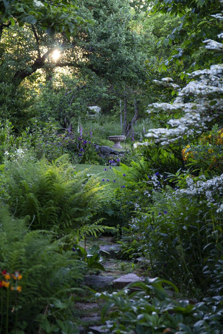 ÅretsUteRum_En Trädgård med utsikt_IMG_9460.Foto Hortensis förlag