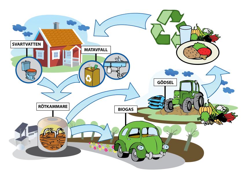 Svartvatten och matavfall återanvänds som biogas och växtnäring i ett kretslopp
