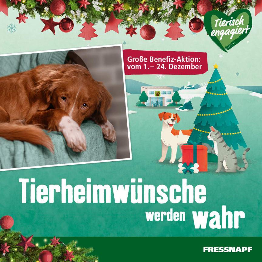 DE_KW49_Tierheimwünsche_RK_SM.Inst_P_1.jpg