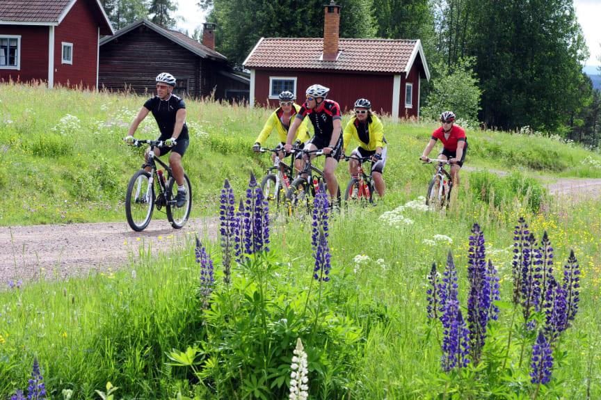 Nyheter inför CykelVasan – miljonbelopp har investerats i VasaloppsArenan