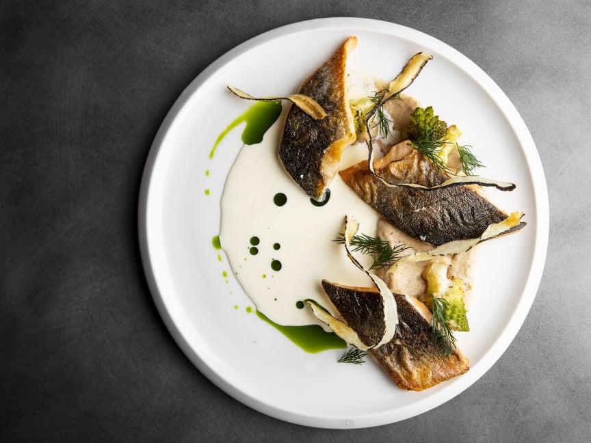 Arctic Bath restaurant - Salmon