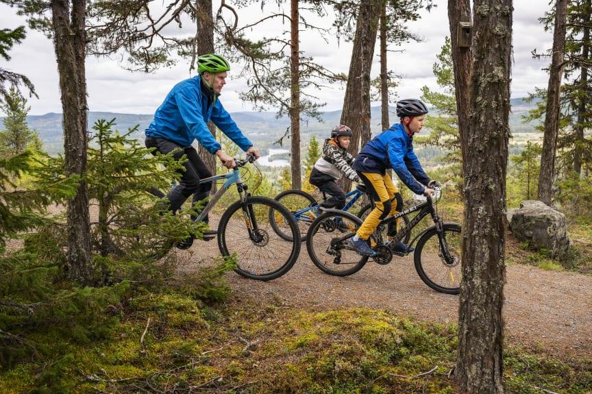 Cykling längs niporna