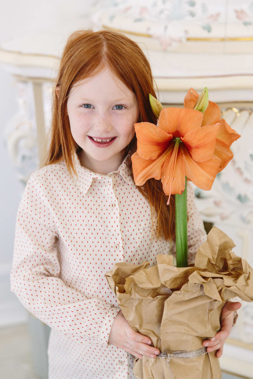 Amaryllisens dag 19 november firas av flicka.