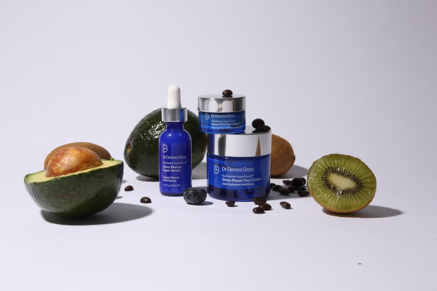Dr Dennis Gross B3 SuperFoods Adaptive Collection