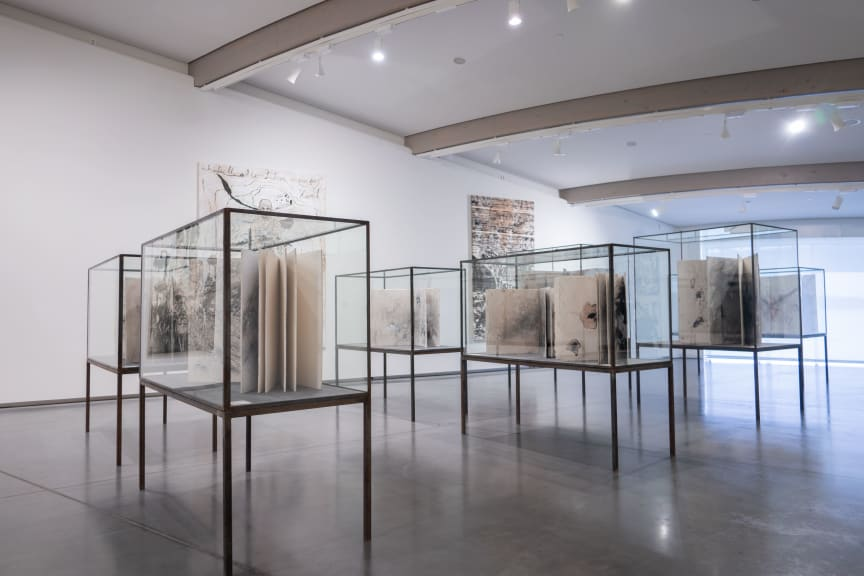 Anselm Kiefer - Books and Woodcuts