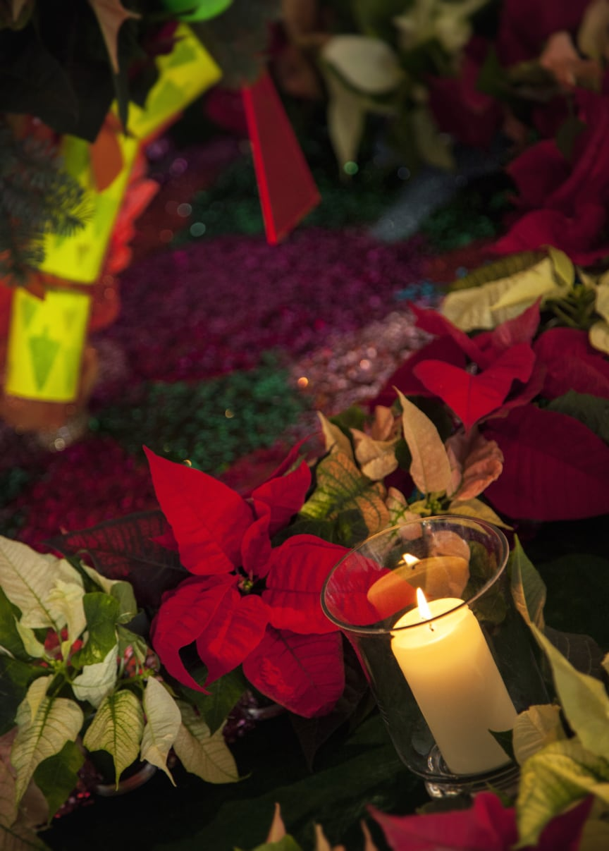 Färgstark festdekoration med julstjärnor 2