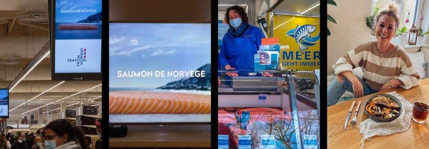 Laksekampanjer Tyiskland og Frankrike