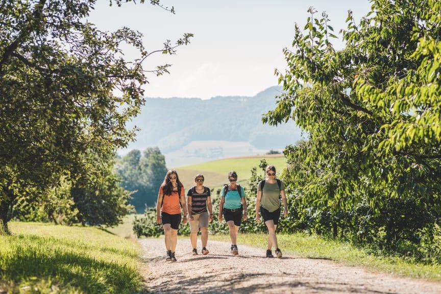 Unterwegs auf dem Fricktaler Hoehenweg © Schweiz Tourismus