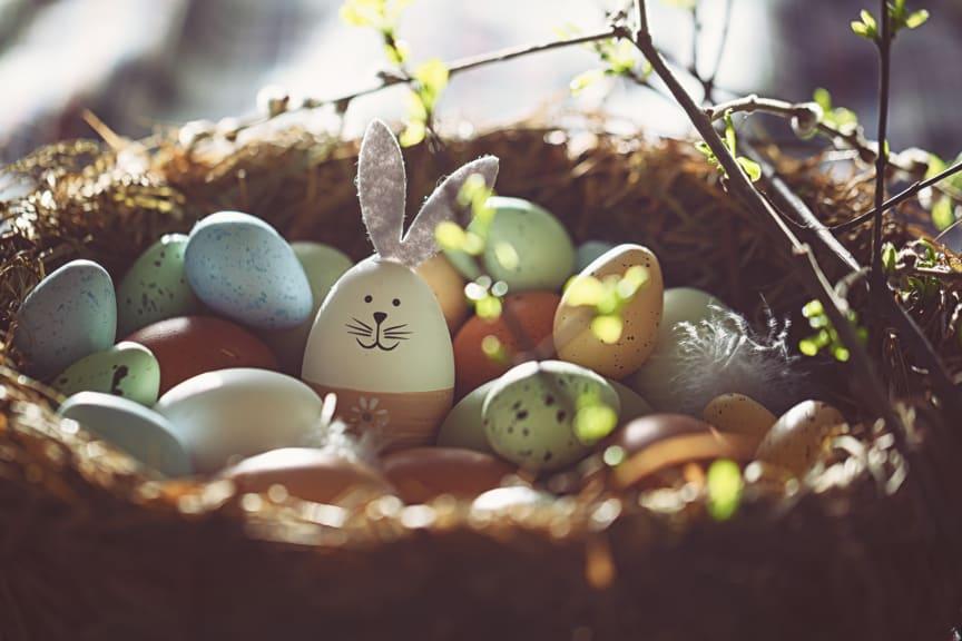 Germany Easter nest
