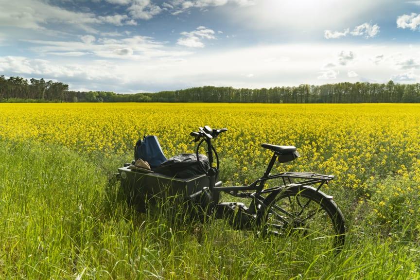 E-Cargobike in Landschaft