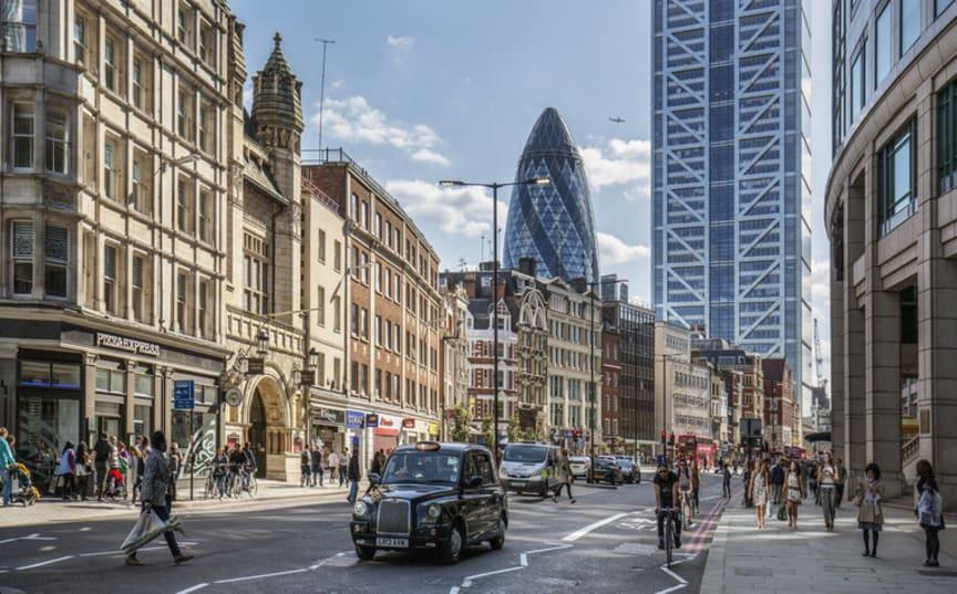 2. London – för yogahunden