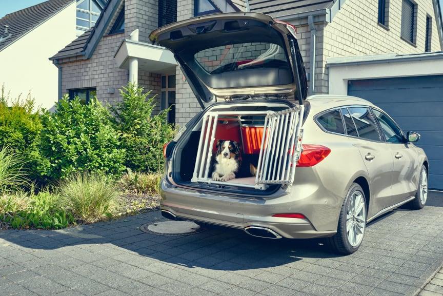 Nye Ford Focus 2019 hundebur