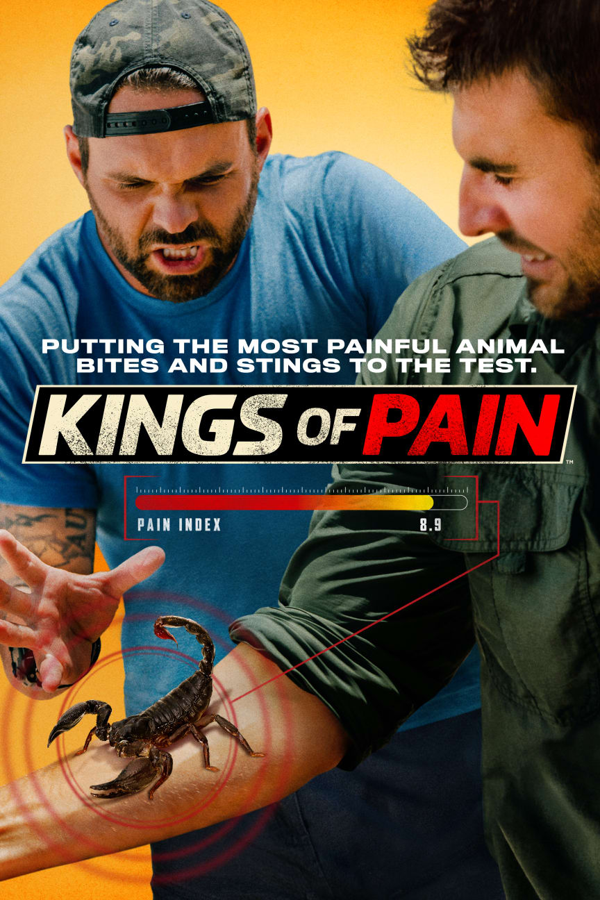 Kings of Pain_HISTORY