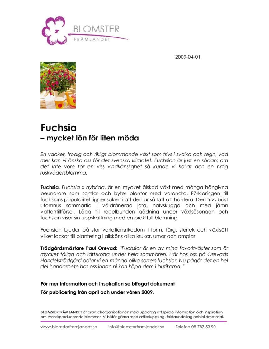 Fuchsia  – mycket lön för liten möda