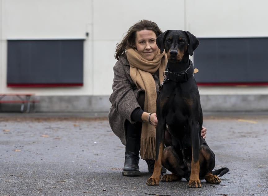 Årets bragdhund 2020