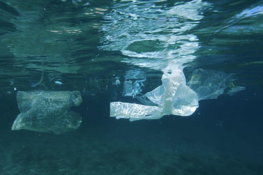 Simmande plastpåse