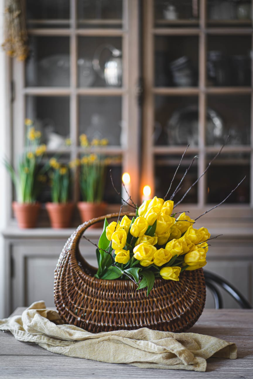 Tulpaner och minipåskliljor till påsk