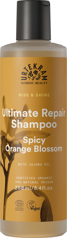 RISE & SHINE Shampoo