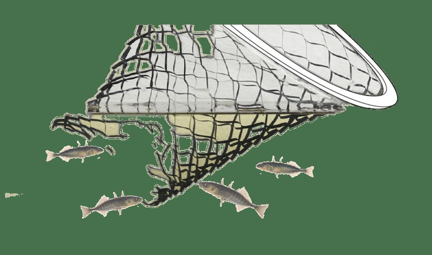 Fiskredskap -håv