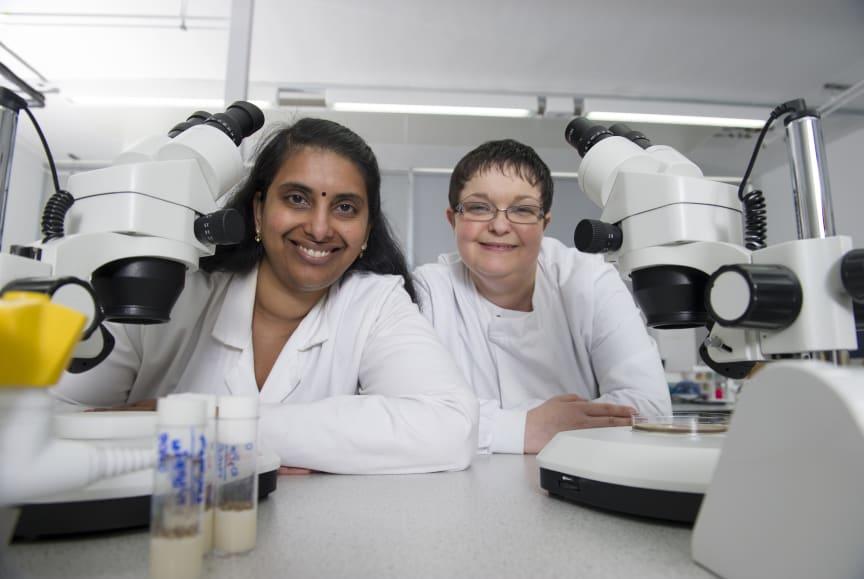 Dr Tora Smulders-Srinivasan and Dr Amanda Jones