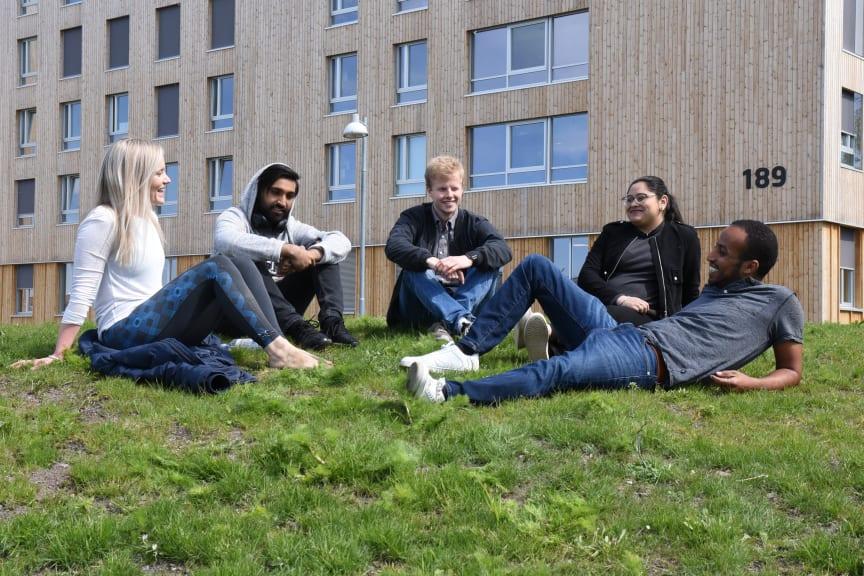 Studenter i Vestfold, foto Heidi Kortner