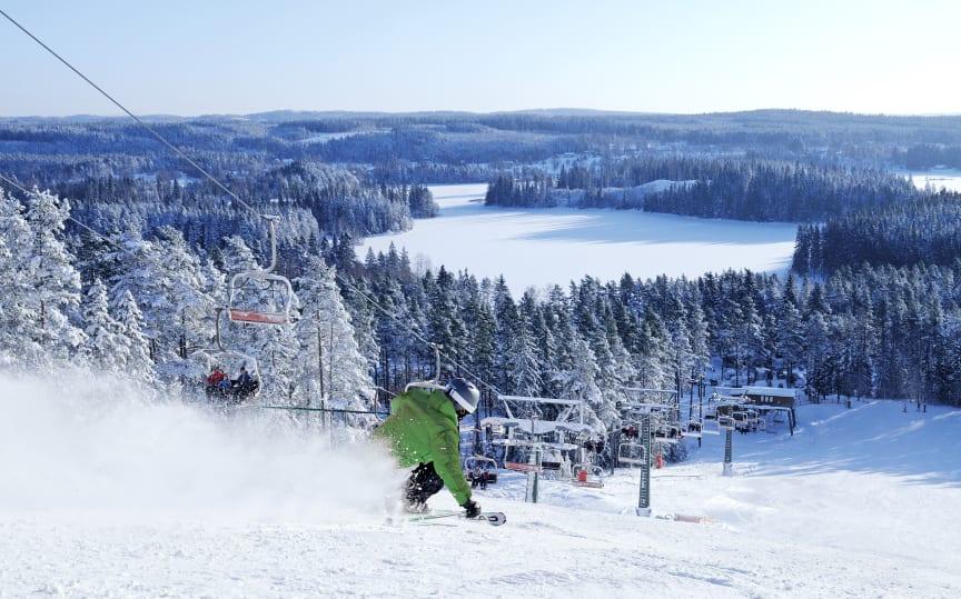 Alpint skiløb i Isaberg