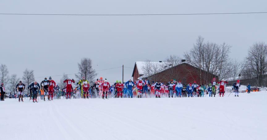 Over 500 deltakere