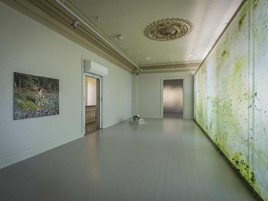 Installation photo Hjorth and Ikonen / Bohlin / Heikkila