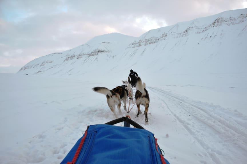 Svalbard26