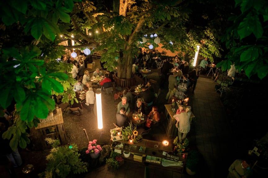 Genießen unter der alten, riesigen Kastanie im romantischen Biergarten der Bachstelze in Erfurt