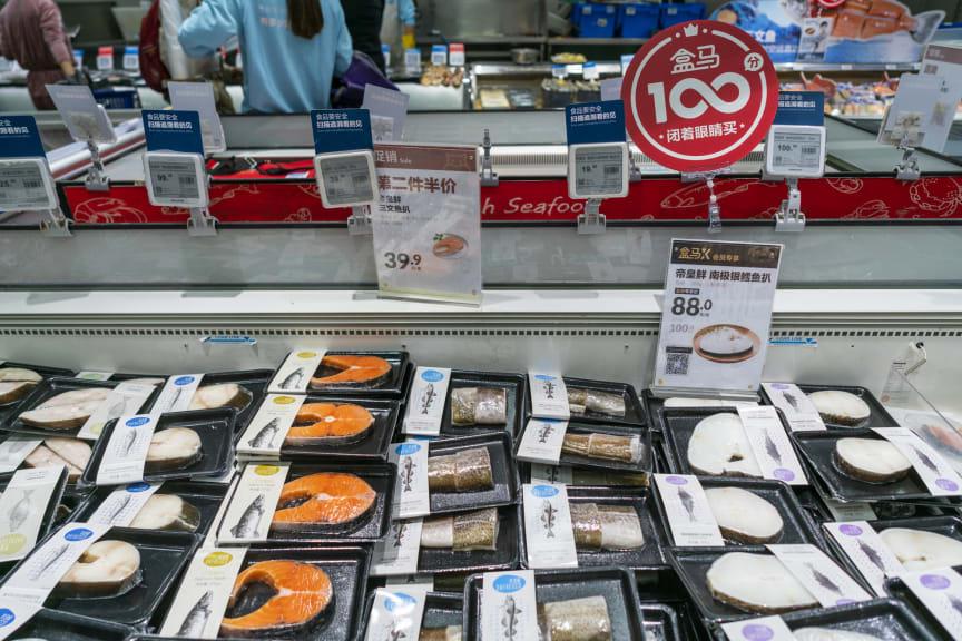 Sjømat i disk i Kina foto NSC