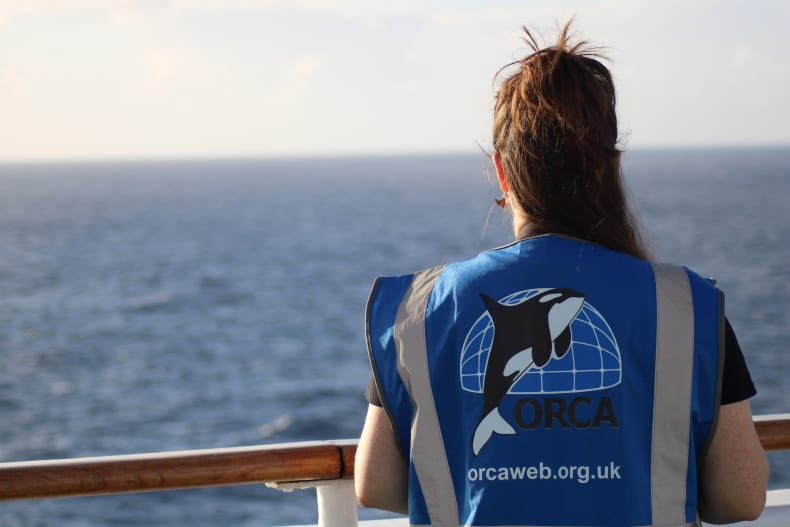 Marine wildlife charity ORCA to join Fred. Olsen Cruise Lines for Welcome Back 'no port' scenic sailings this summer  (March 2021)