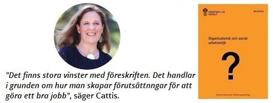 Världsdagen för arbetsmiljö Cattis Olsén för VeaLearn