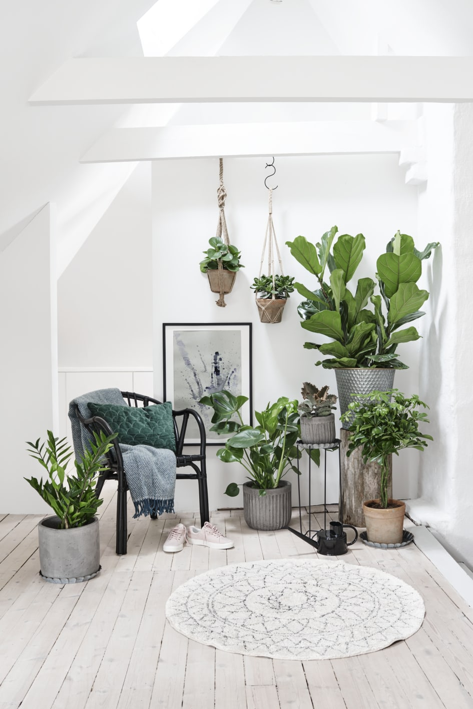 inreda med gröna växter