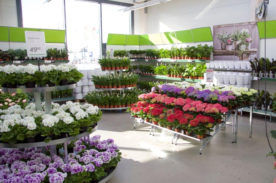 blomsterlandet sundsvall öppettider