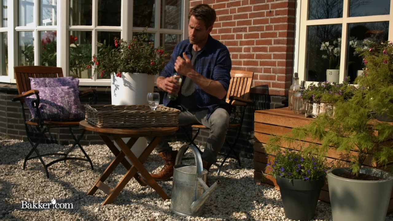 Havetrick: Vand blomsterne når du er på ferie